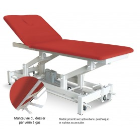 TABLE DE MASSAGE ELECTRIQUE BIPLAN - HM802N